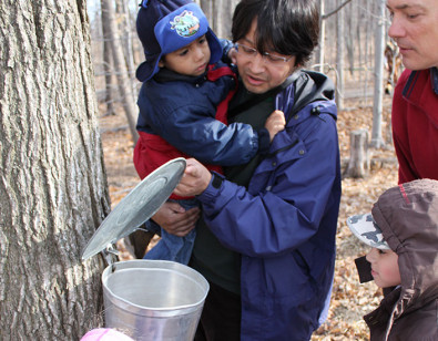 Kortright Maple Syrup