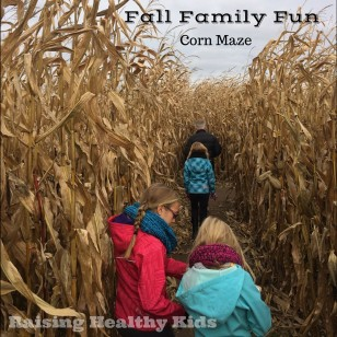 fall_fun_cornmaze