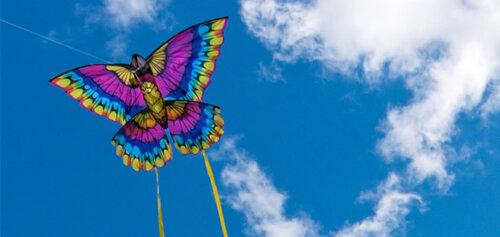 kortright-kite-flying
