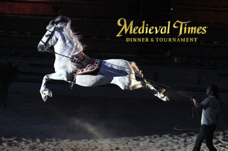 Medieval Times Contest