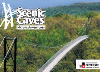 Scenic Caves suspension Bridge