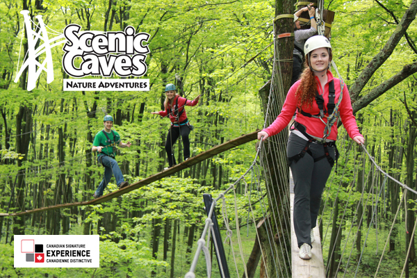 Treetop trekking at Scenic caves