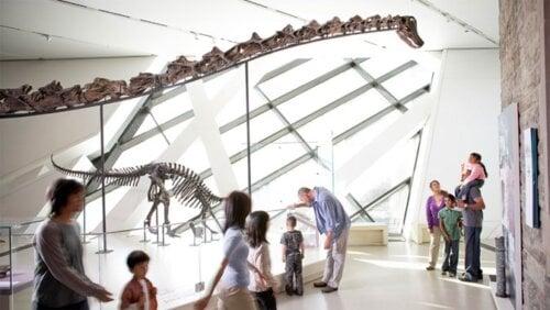 ROM Dinosaur Gallery