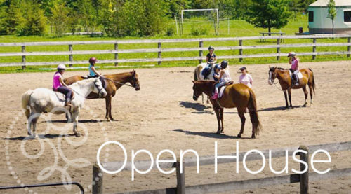 Earthbound Stables Open House