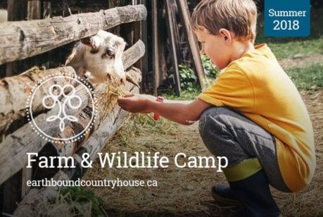 Farm & Wildlife Camp