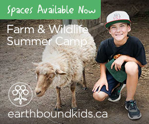 Farm & Wildlife Summer Camp