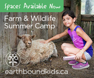 Farm & Wildlife Camp