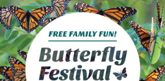 Tommy Thompson Park Butterfly Fest