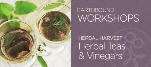Earthbound Herbal Harvest Workshop