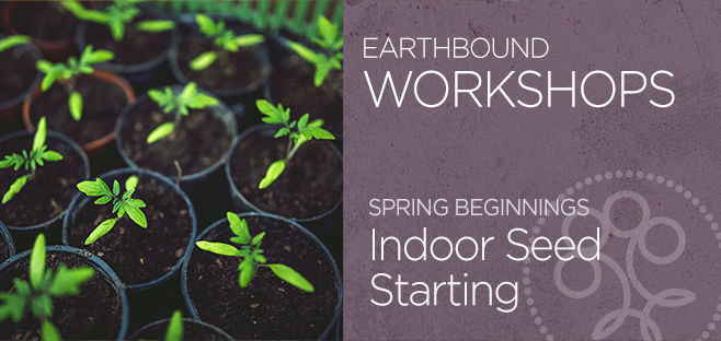 Indoor Seed Starting Workshop