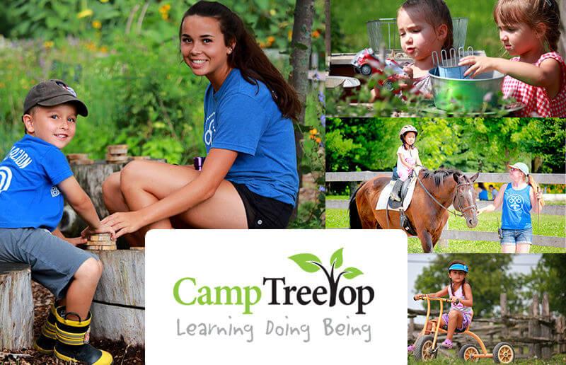 Camp Treetop Summer Camp