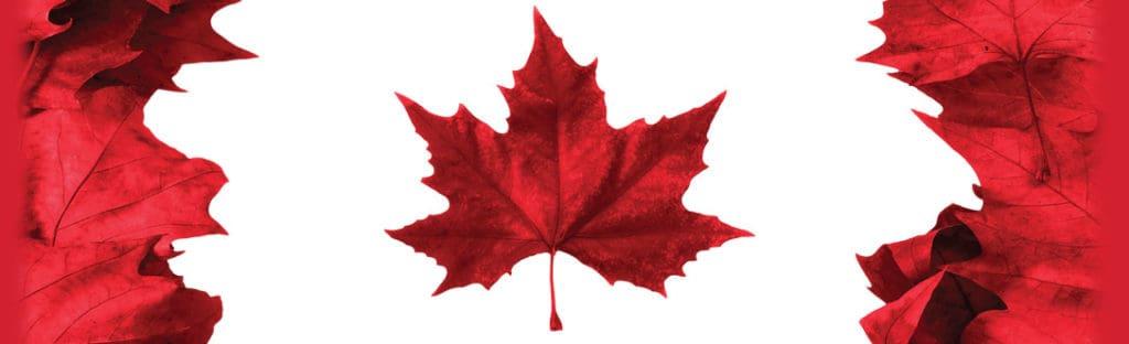 Richmond Hill Canada Day
