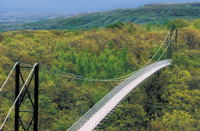 SC Suspension-Bridge