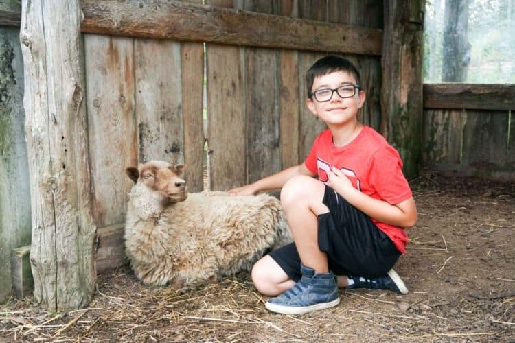 Earthbound Farm & Country House Schools Strike Programs
