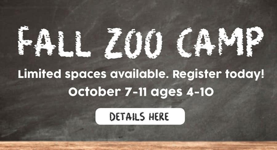 Toronto Zoo Strike Camp