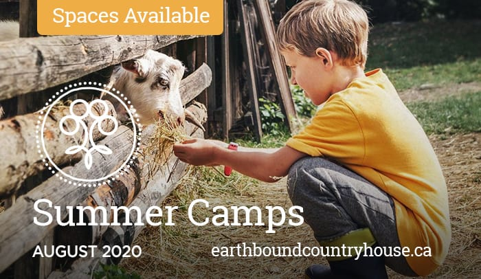 Outdoor Farm Camps at Earthbound Country House