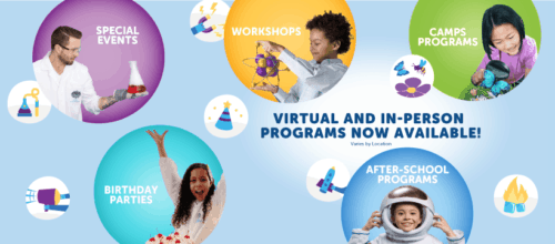Mad Science Online Learning