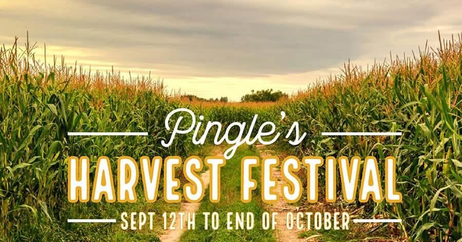Pingles Harvest Festival