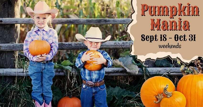 Pumpkin Mania at Rounds Ranch
