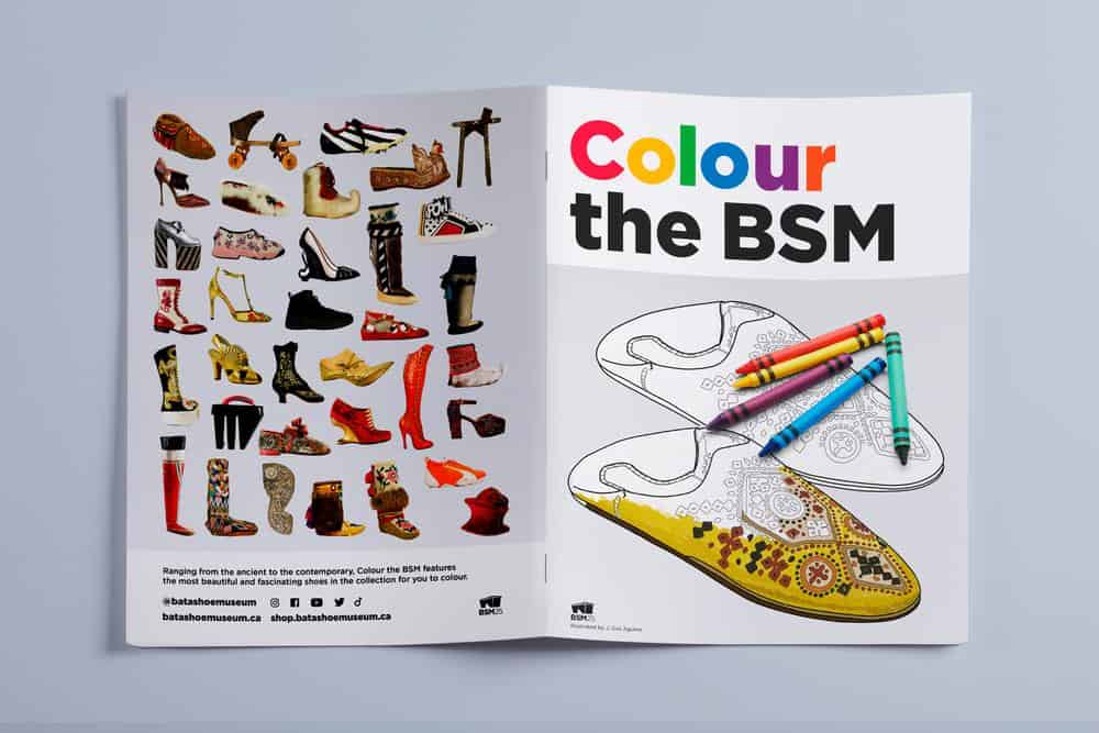 Colour the BSM