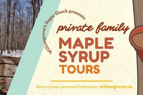 Maple Syrup Tours at Willowgrove