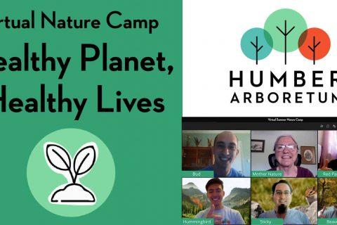 Nature-camp_FB-events-4