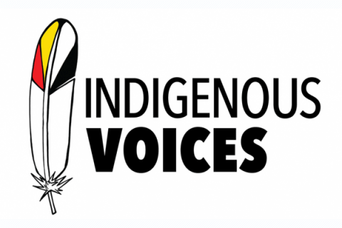 ROM Indigenous Voices