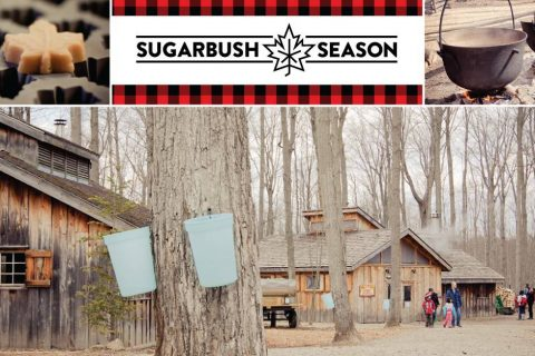 Mounstberg Sugar Bush Maple Town