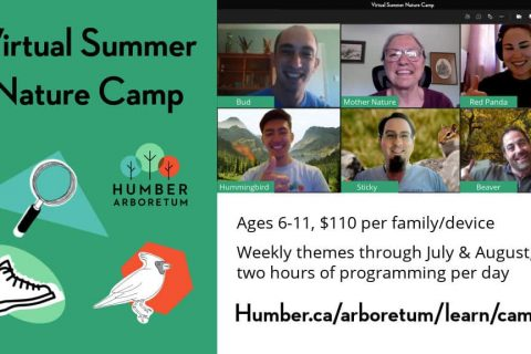 Humber Arboretum Virtual Nature Camp