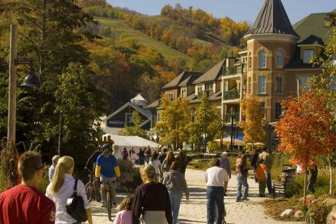 Apple Harvest Weekend at Blue Mountain