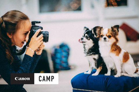 Canon Camps